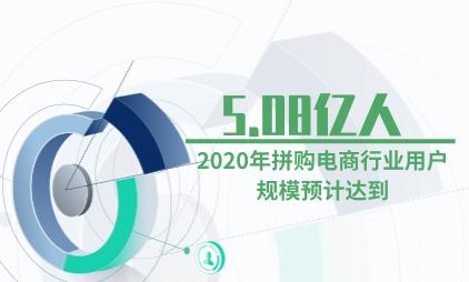 拼购电商行业数据分析:2020年用户规模预计达到5.08亿人