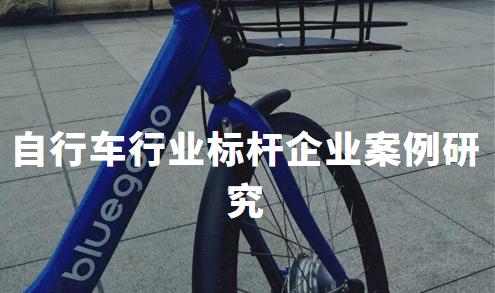 2020中国自行车行业标杆企业案例研究——中路股份、信隆健康