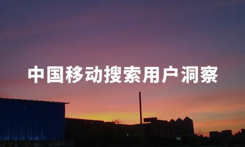 2020上半年中国移动搜索用户洞察:90后为主力军