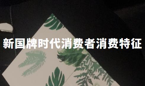2019-2020中国新国牌时代消费者消费特征分析