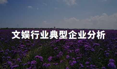 2020年中国文娱行业典型企业分析——灿星文化