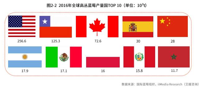 2016年全球高丛蓝莓产量过TOP10