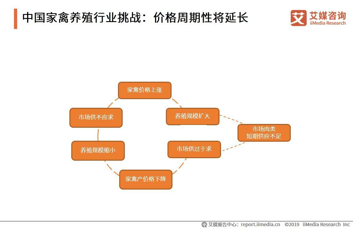 中国家禽养殖行业挑战分析:价格周期性将延长