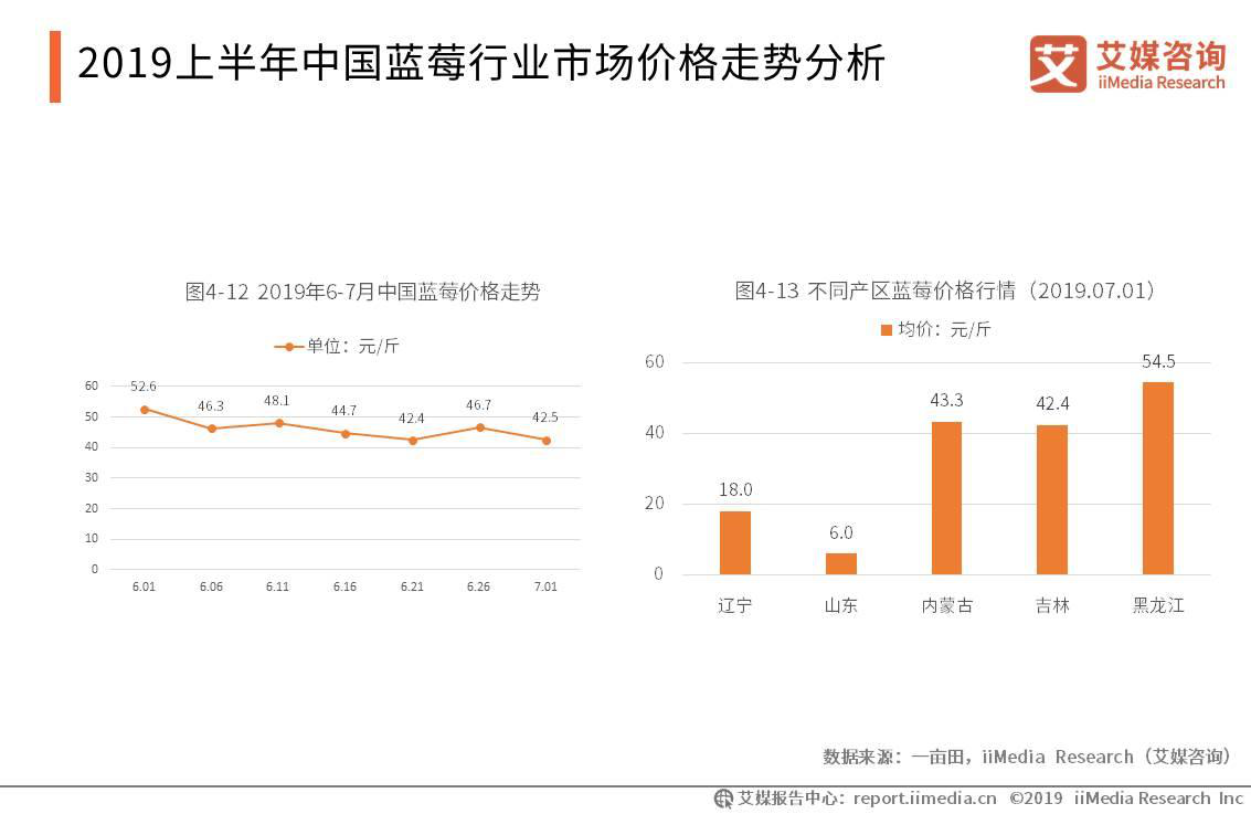 2019中国蓝莓行业现状,困境及发展趋势