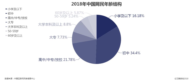 2018年中国网民年龄结构