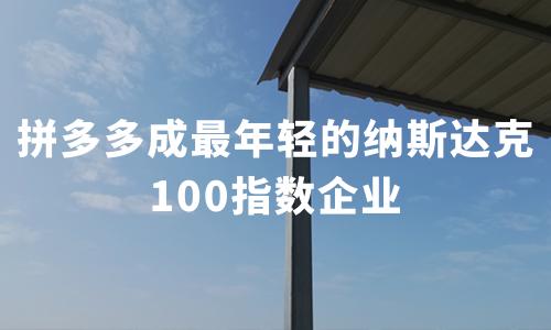 拼多多成最年轻的纳斯达克100指数企业