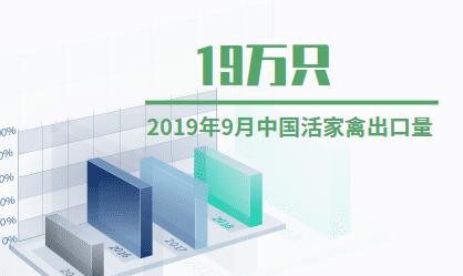 家禽养殖业数据分析:2019年9月中国活家禽出口量为19万只