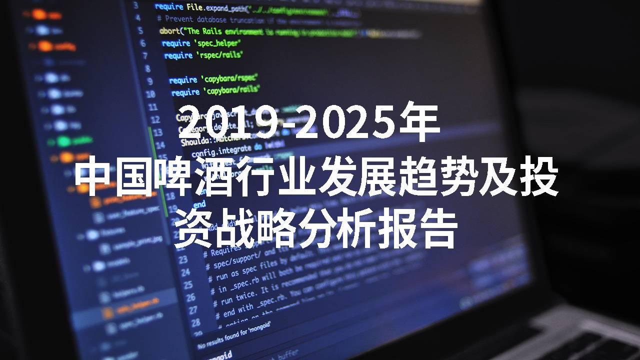 2019-2025年中国啤酒行业发展趋势及投资战略分析报告