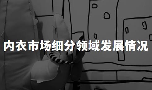 2019-2020中国内衣市场细分领域发展情况分析——女性文胸、男性内衣、儿童内衣