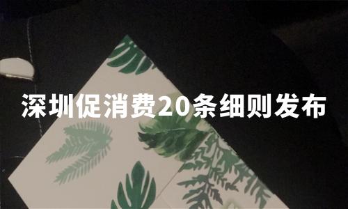 深圳促消费20条细则发布:零售龙头企业落户可获亿元奖励