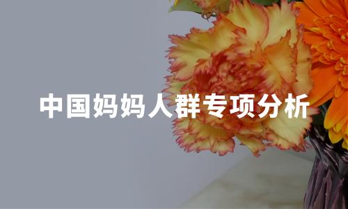 2020年中国妈妈人群主力、孕育观念及消费决策影响因素分析