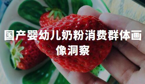 全职妈妈信心更强:2019中国国产婴幼儿奶粉消费群体画像洞察