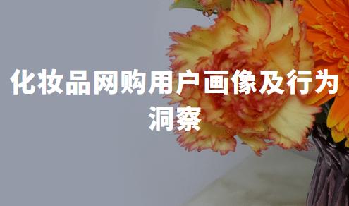 2019-2020年中国化妆品网购用户画像及行为洞察