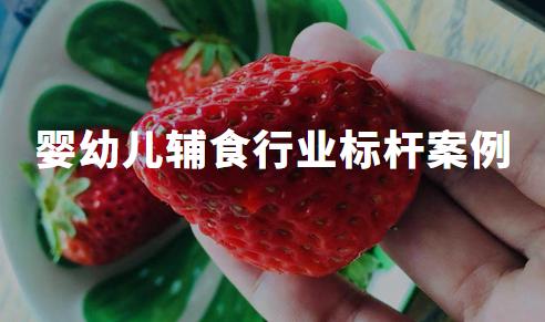 2020Q1中国婴幼儿辅食行业标杆案例分析——嘉宝、小皮、英氏、方广、卡夫亨氏