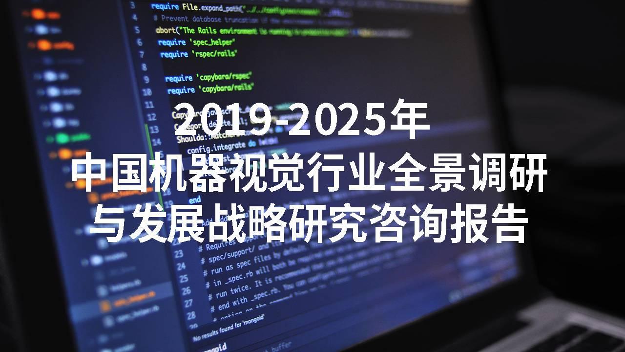 2019-2025年中国机器视觉行业全景调研与发展战略研究咨询报告