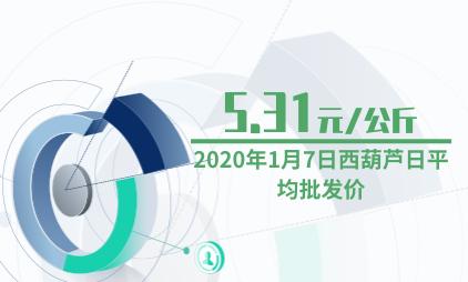 西葫芦行业数据分析:2020年1月7日西葫芦日平均批发价为5.31元/公斤