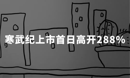 """AI芯片第一股寒武纪""""登科"""":上市首日高开288%,市值冲上千亿"""