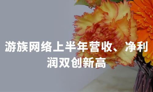 游族网络上半年营收、净利润双创新高,积极布局5G云游戏