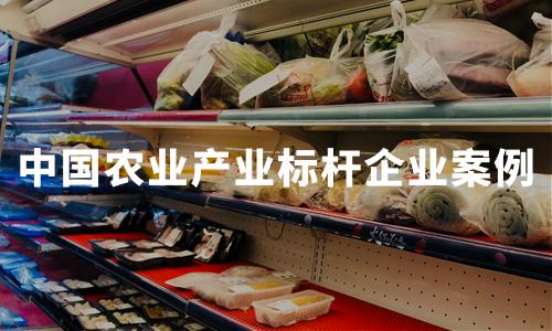 2020年中国农业产业标杆企业案例分析——北大荒