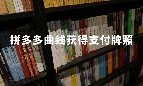 拼多多曲线获得支付牌照!2019中国移动支付行业发展趋势分析