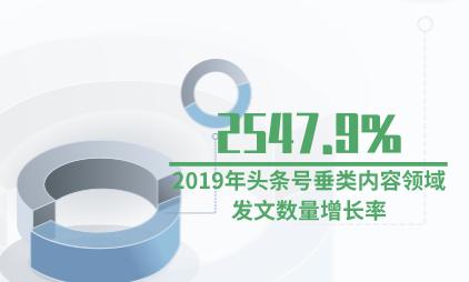 新媒体行业数据分析:2019年头条号垂类内容领域发文数量增长率为2547.9%