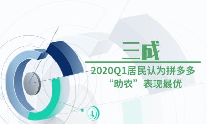 """农货电商行业数据分析:2020Q1三成居民认为拼多多""""助农""""表现最优"""