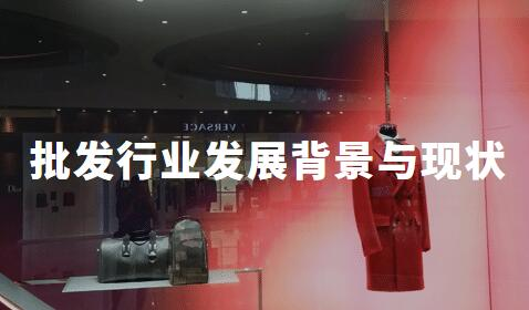 2018-2019中国批发行业发展背景与现状分析