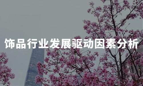 2020年中国饰品行业发展驱动因素分析