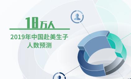 母婴行业数据分析:预计2019年中国赴美生子人数达到18万人