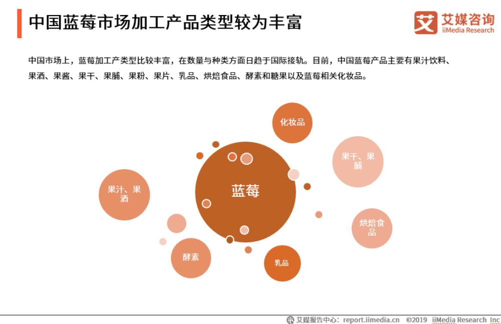 蓝莓后市场细分数据及发展趋势研究报告