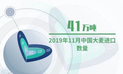 谷物行业数据分析:2019年11月中国大麦进口数量为41万吨