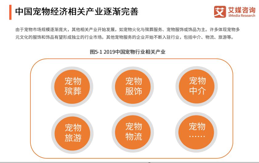 中国宠物经济相关五分3d逐渐完善