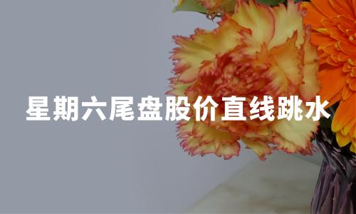 """网红概念股星期六上演""""天地板"""",暴跌20%!"""