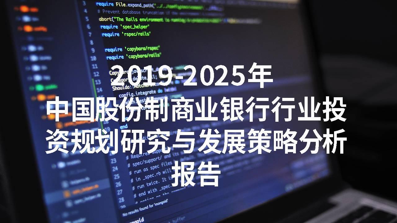 2019-2025年中国股份制商业银行行业投资规划研究与发展策略分析报告