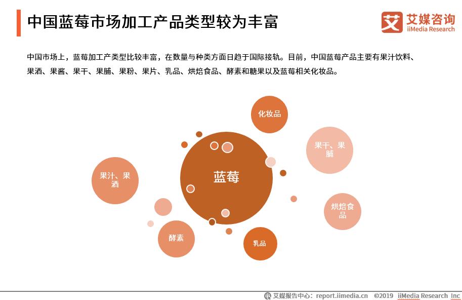 中国蓝莓市场加工产品类型较为丰富