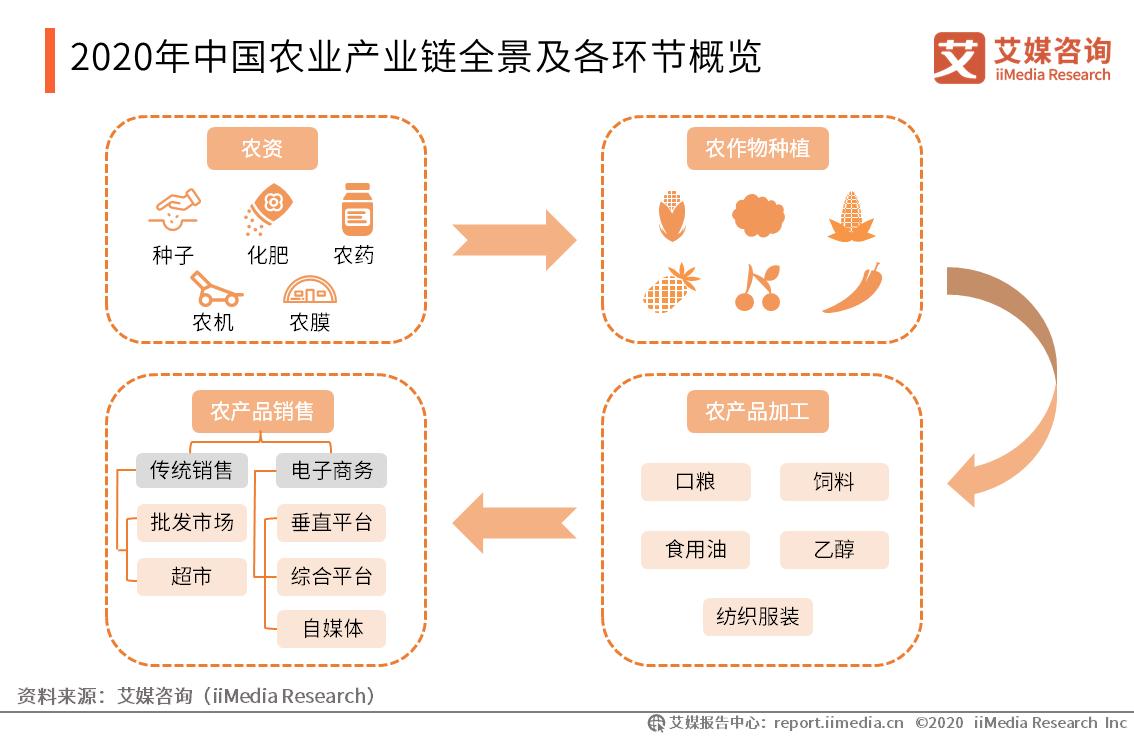 2020年中国农业产业链全景及各环节概览