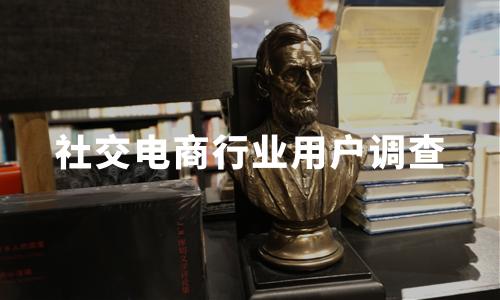 2019-2020中国社交电商行业用户规模及用户调查