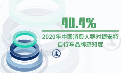 自行车行业数据分析:2020年中国消费人群对捷安特自行车品牌感知度为40.4%