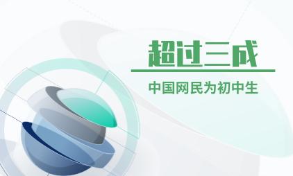 互联网行业数据分析:超过三成中国网民为初中生