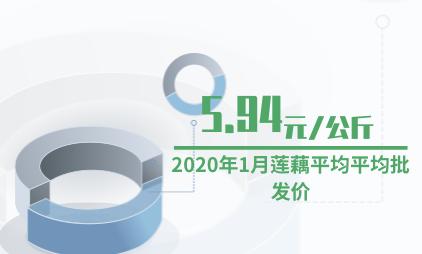 农产品行业数据分析:2020年1月莲藕平均平均批发价为5.94元/公斤