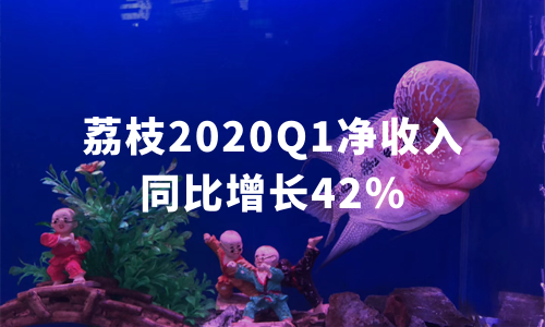 荔枝发布2020年Q1财报:月活和净收入分别同比增长34%、42%,超预期