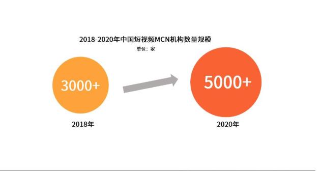2019中国MCN机构发展现状与趋势解读