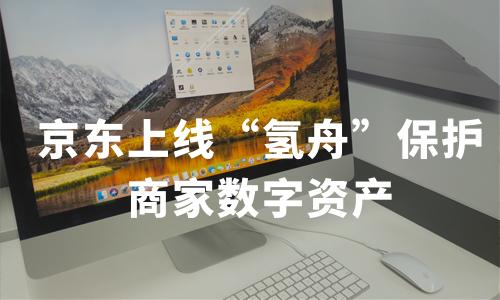 """京东上线""""氢舟""""保护商家数字资产,2019中国知识产权行业有哪些发展机遇?"""