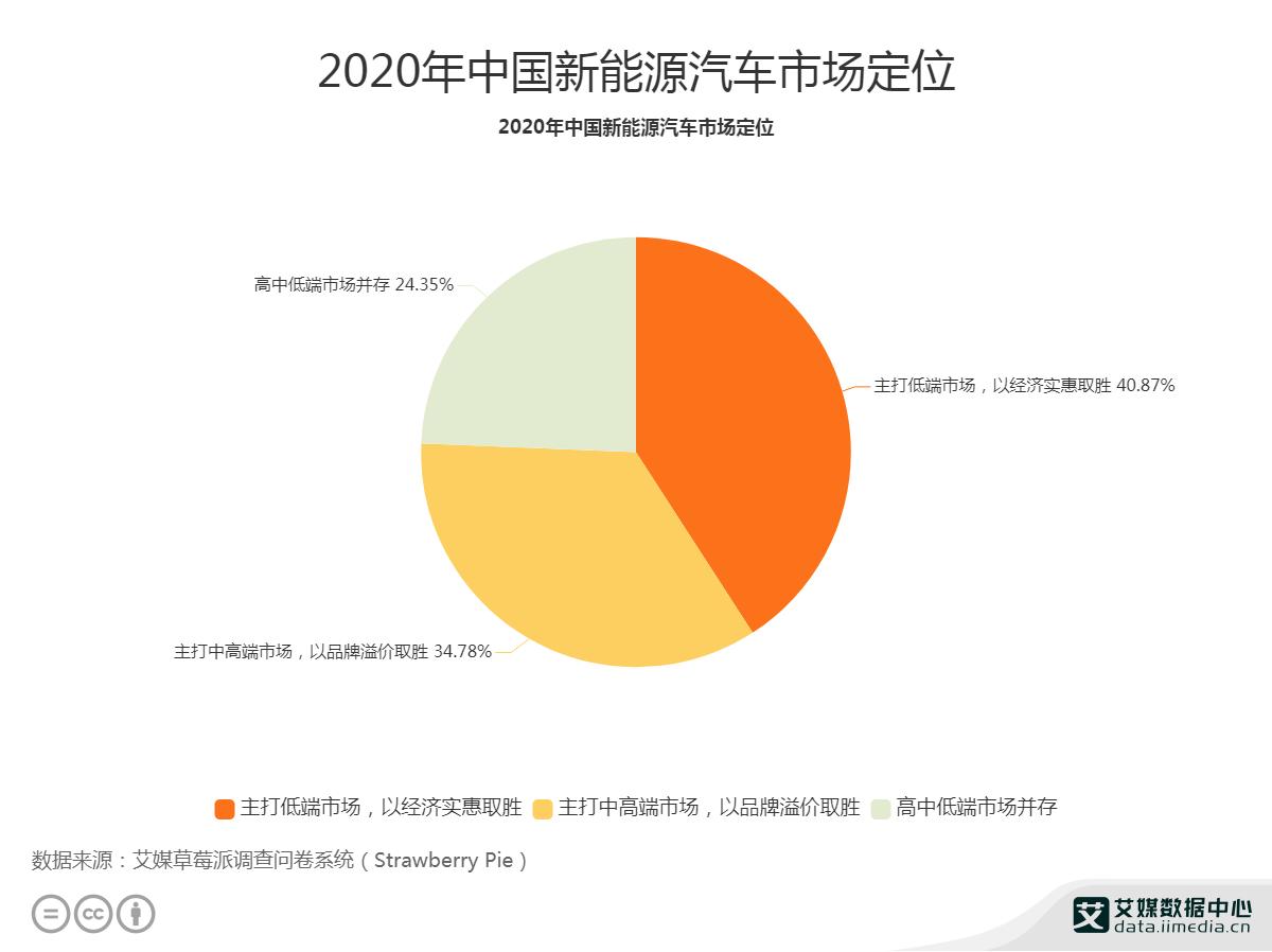 2020年中国新能源汽车市场定位