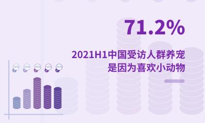 宠物经济数据分析:2021H1中国71.2%受访人群养宠是因为喜欢小动物