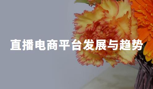 2020年中国直播电商平台发展现状、挑战与趋势全剖析