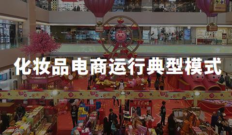 中国化妆品电商行业运行规律典型模式分析