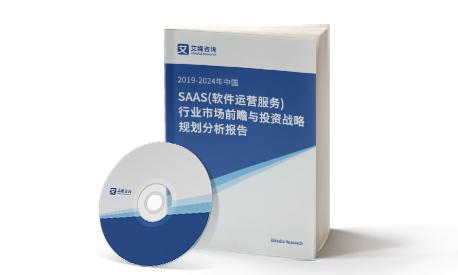 2019-2024年中国SAAS(软件运营服务)行业市场前瞻与投资战略规划分析报告