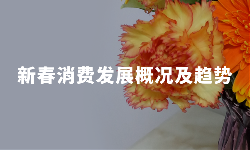 2020中国新春消费发展概况及趋势总结