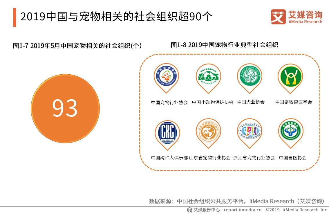 2019中国与宠物相关的社会组织超90个